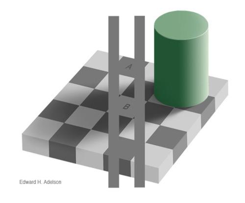 Квадраты А и В окрашены в один и тот же оттенок серого.